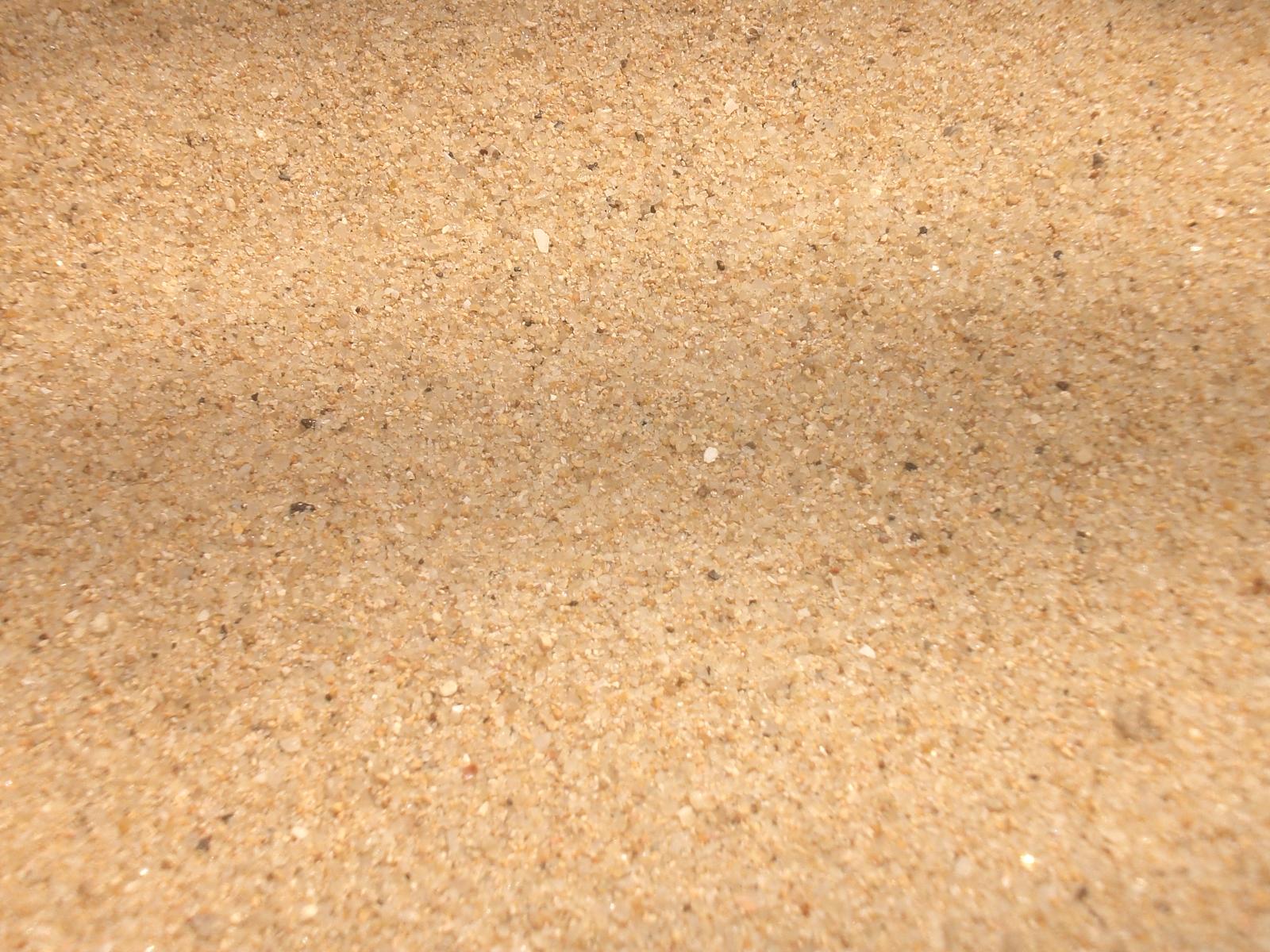 sand jpg camp koolaree